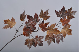 Load image into Gallery viewer, Maple Leaf Branch 112cm