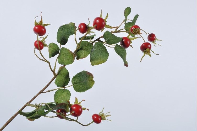 Berry Spray Rosehip Red 69cm