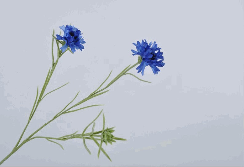 Load image into Gallery viewer, Blue Cornflower Spray 65cm