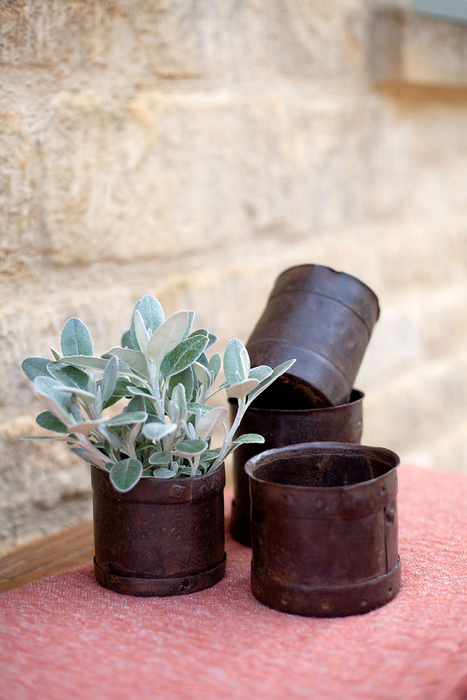 Iron Planter - Small