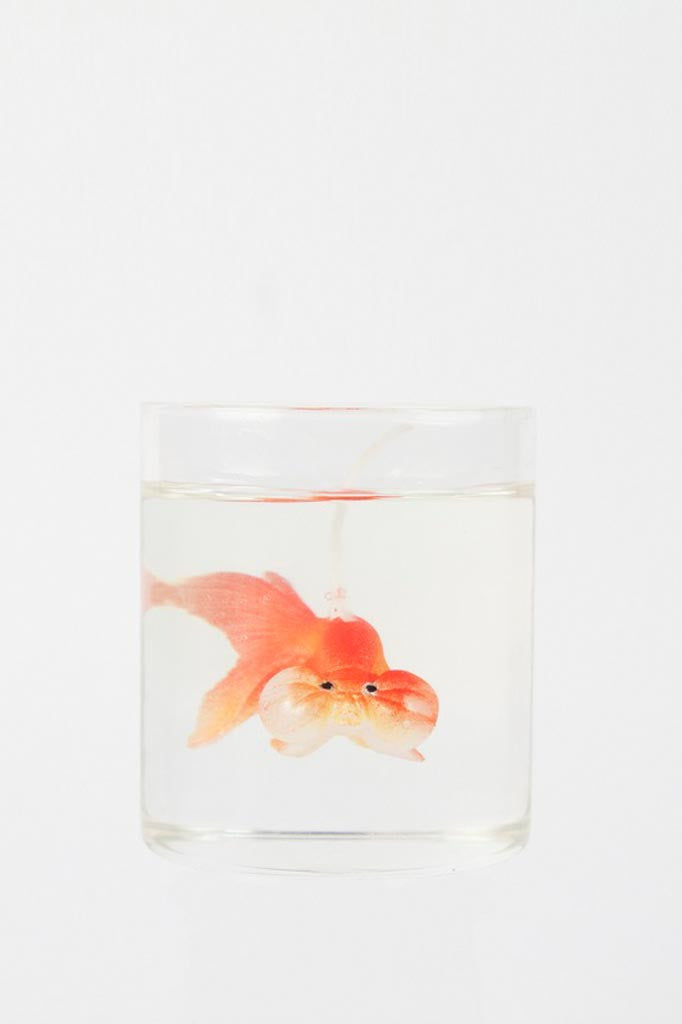 Goldfish candle in glass