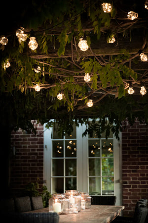 Festoon Classic Lights - 20 Bulbs
