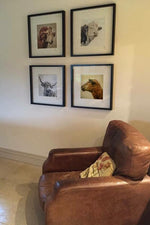 Set of four prints, in a square, hung on a wall.