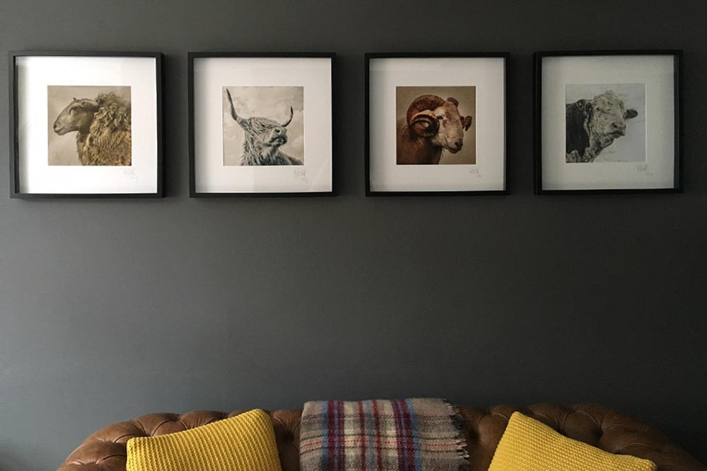 A set of four print in a line hung on a dark grey wall.