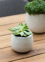 Ravello Plant Pot - Small