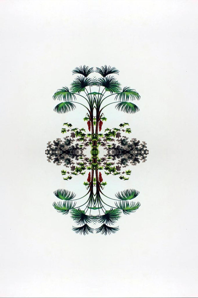 A botanical reflection print depicting fine detail in rich, vivid colour