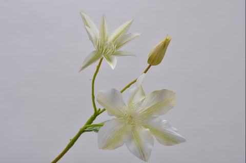 Silk ka Clematis pickWhite/green