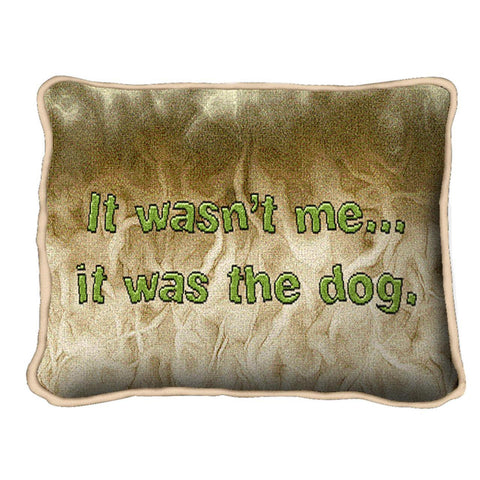 Wasn't Me Pillow