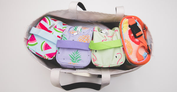 Easy Baby Travelers diaper bag organizers