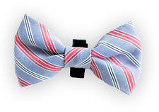 Blue with Red and White Stripe Bow Tie