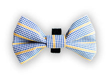 Blue and Yellow Check Bow Tie