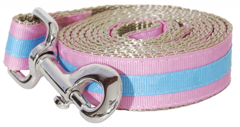 Prep School Striped Leash