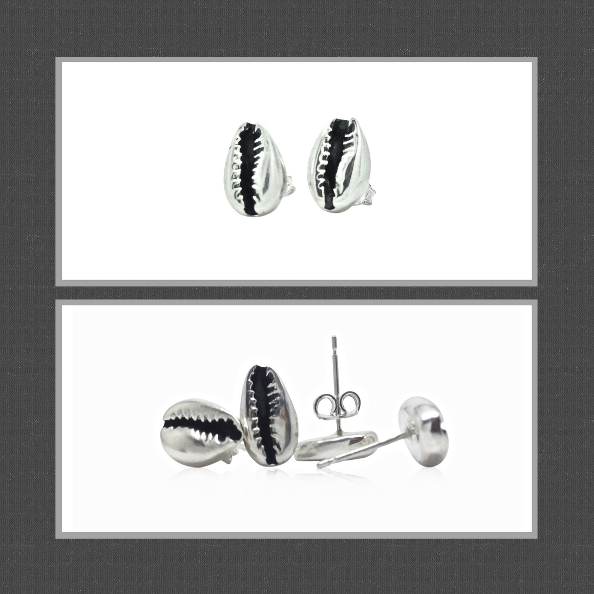 Cowrie shell stud earrings