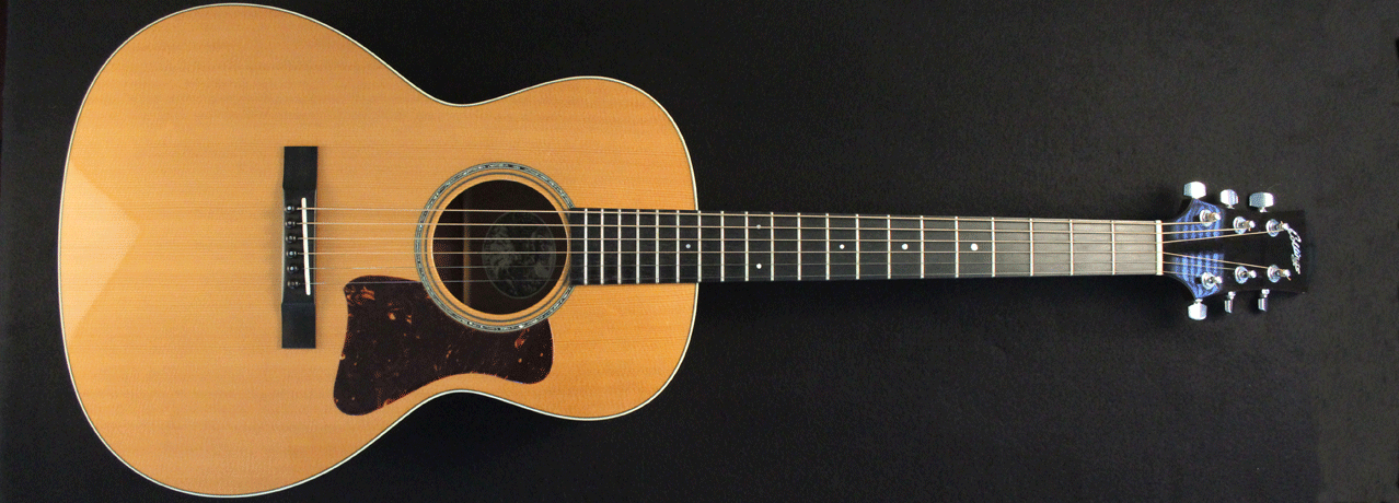 Collings C10 Natural Mahogany Full