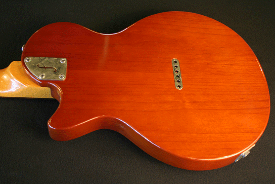 Fano SP6 TV Burst Finish Body Back