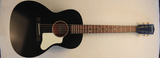 Waterloo Guitars WL14-L with Truss Rod (Black) WL545