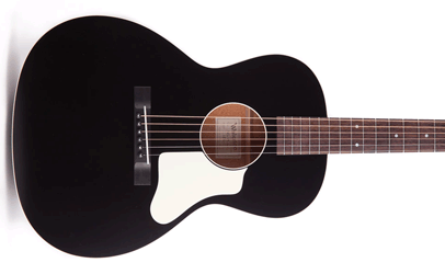 Waterloo Guitars WL-14X with Truss Rod (Black) WL643