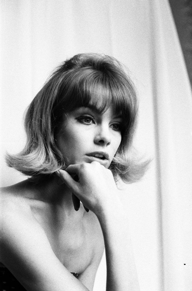 Detail of Jean Shrimpton 1963 by Robin Douglas-Home