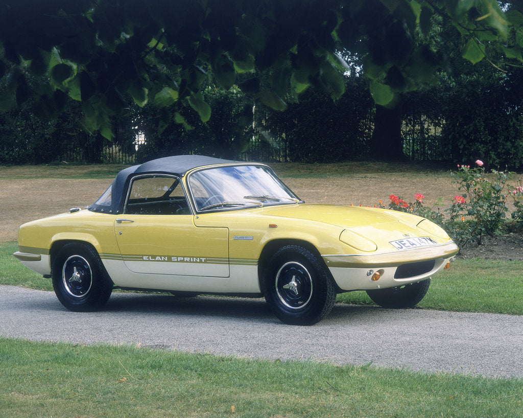 Detail of 1972 Lotus Elan Sprint by Unknown
