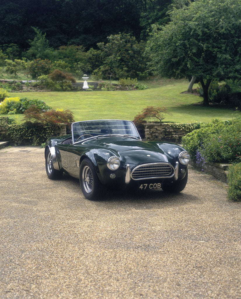 Detail of 1964 AC Cobra by Unknown