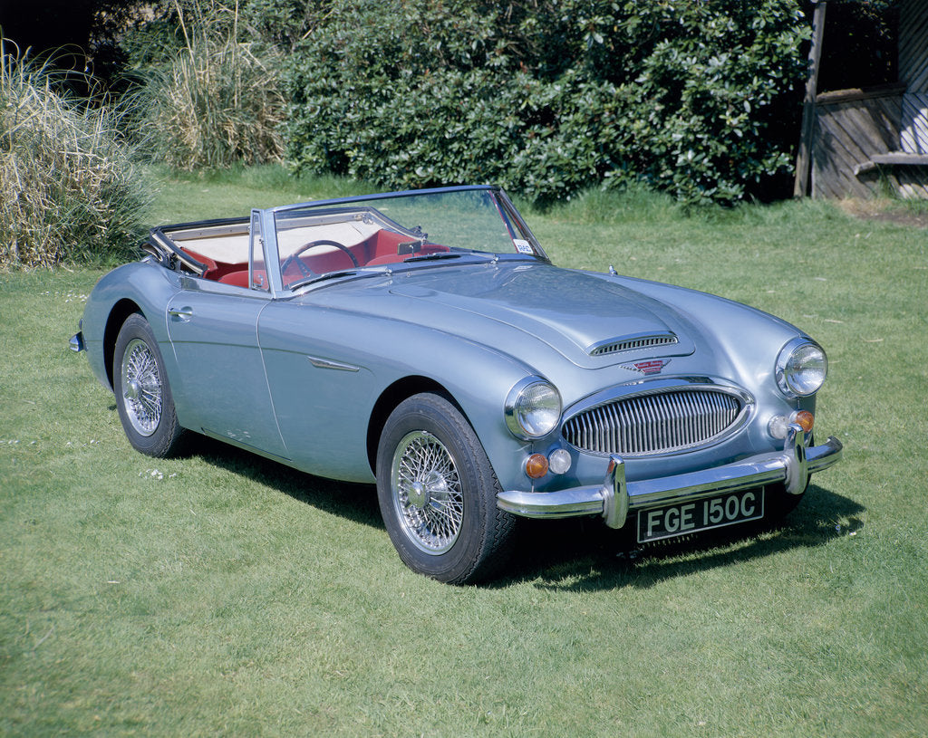 Detail of A 1965 Austin Healey 3000 MK3 by Unknown