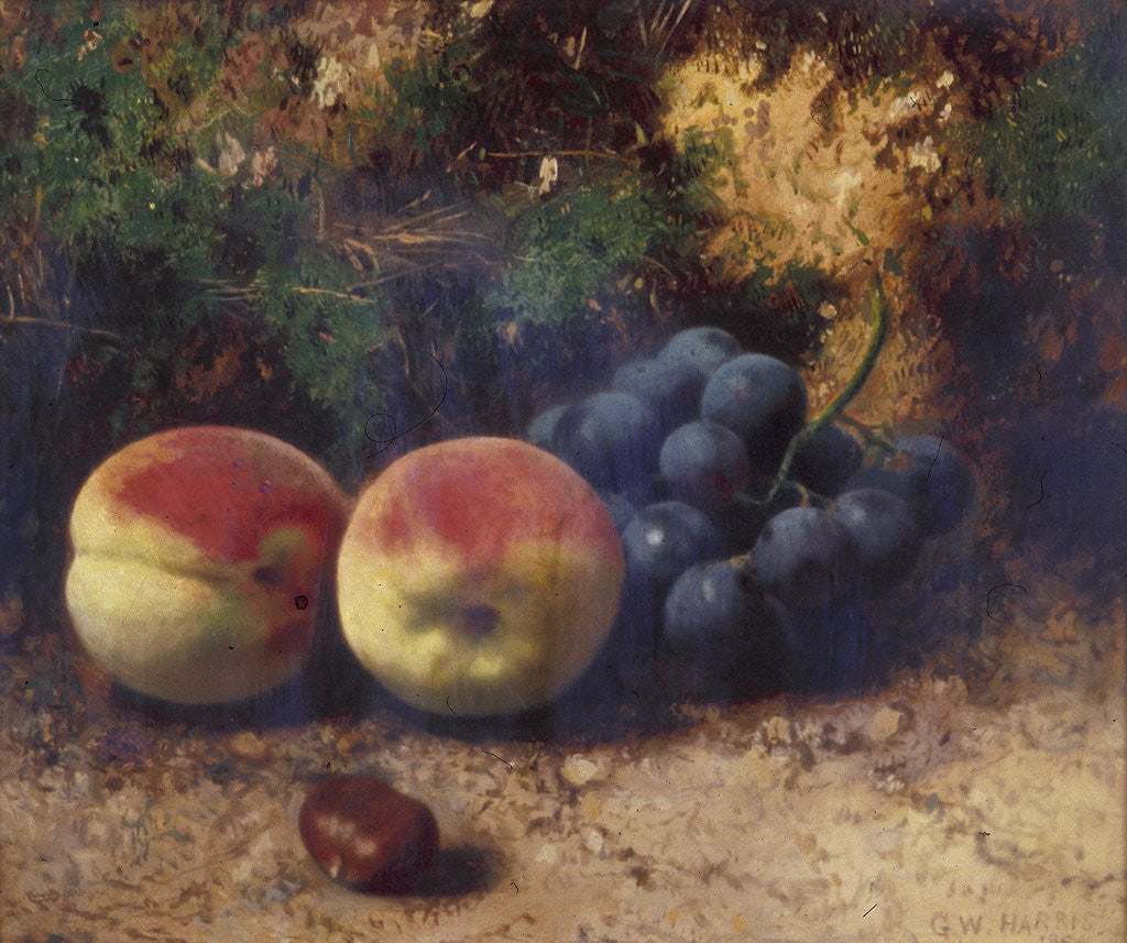 Detail of Peaches and Grapes by