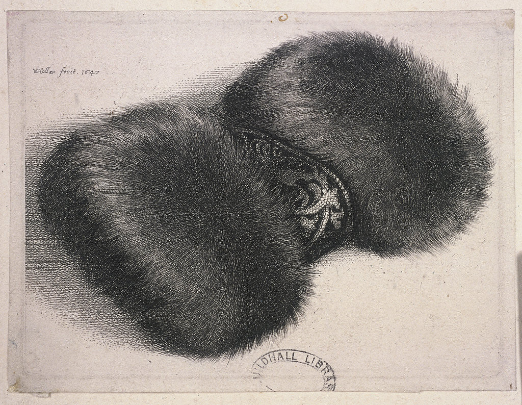 Detail of A large muff with a band of brocade by Wenceslaus Hollar