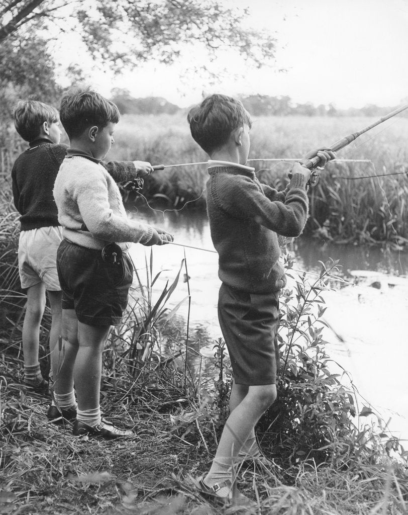 Detail of Boys fishing, c1960s by Tony Boxall