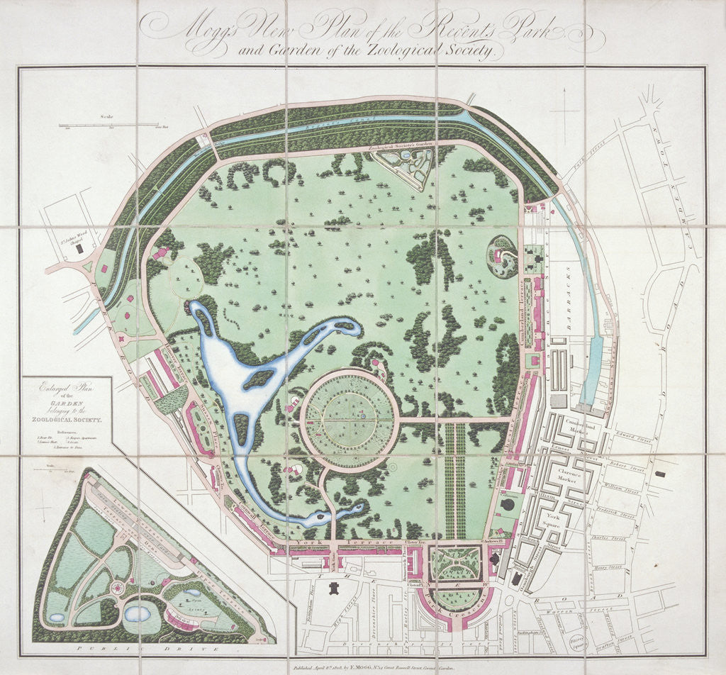 Detail of Plan of the Zoological Gardens, Regent's Park, St Marylebone, London by Edward Mogg