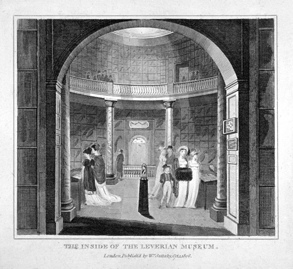 Detail of Interior view of the Leverian Museum, Albion Place, Southwark, London by Anonymous