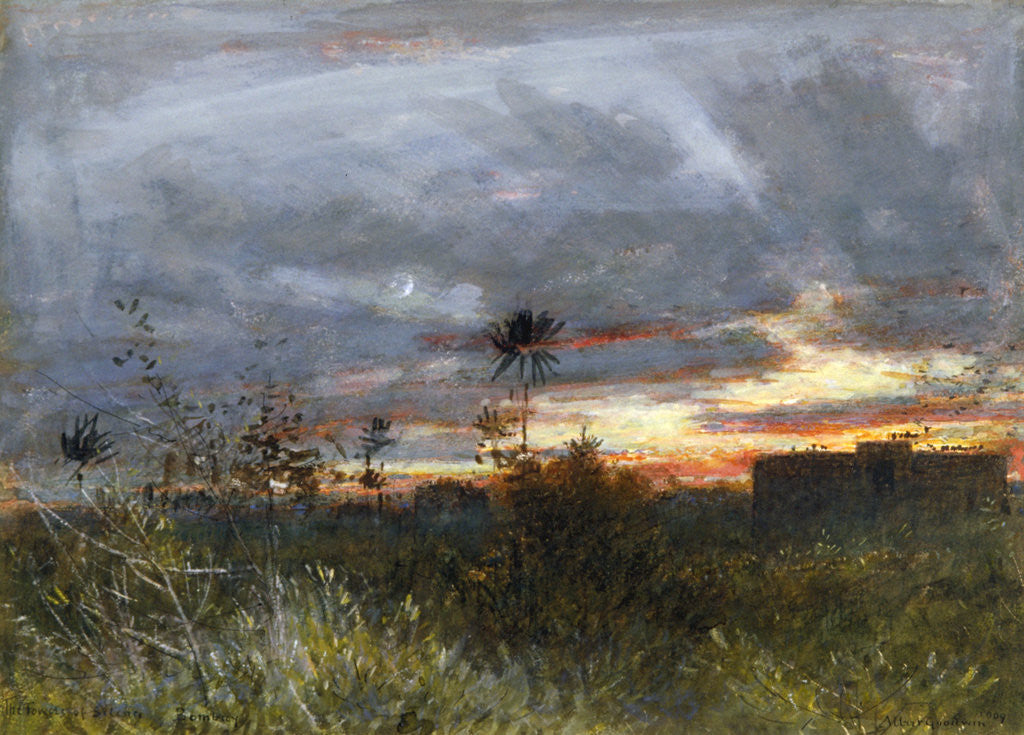 Detail of The Towers of Silence, Bombay by Albert Goodwin