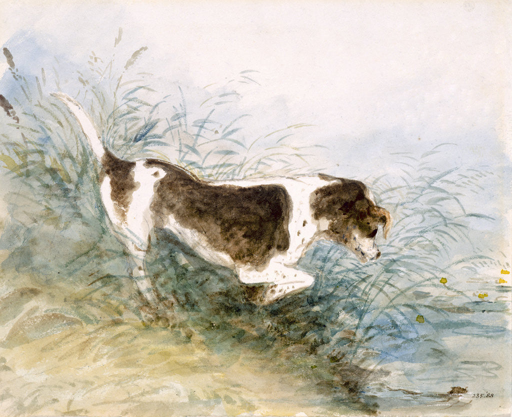 Detail of A Dog Watching a Rat in the Water by John Constable