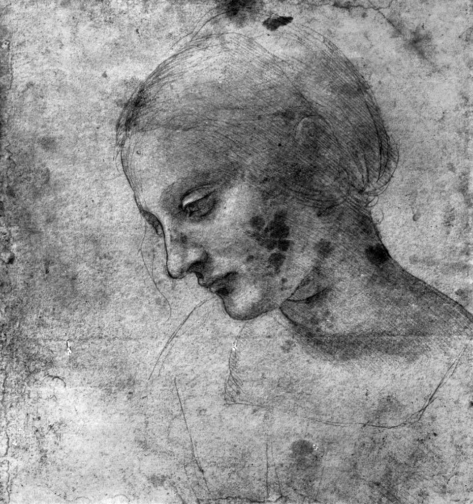 Detail of Study of the head of the Madonna by Leonardo Da Vinci