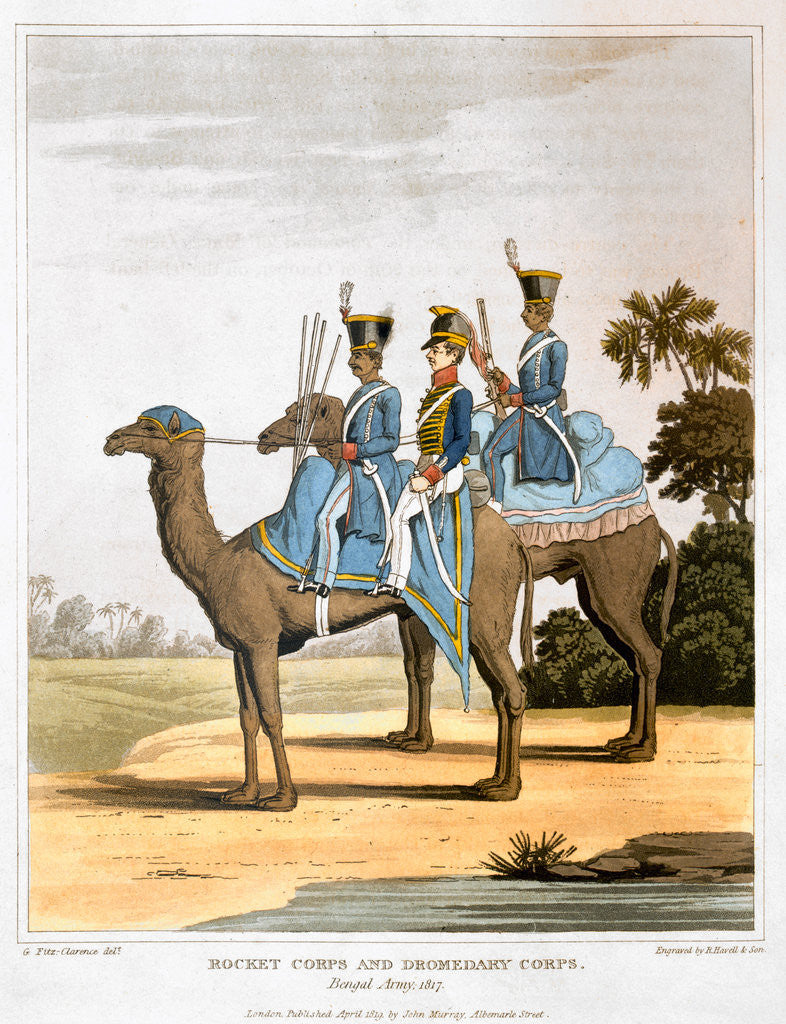 Detail of Rocket Corps and Dromedary Corps by Havell & Son