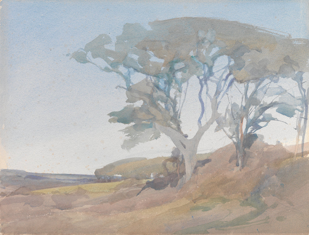 Detail of Trees against a Clear Blue Sky by Archibald Knox