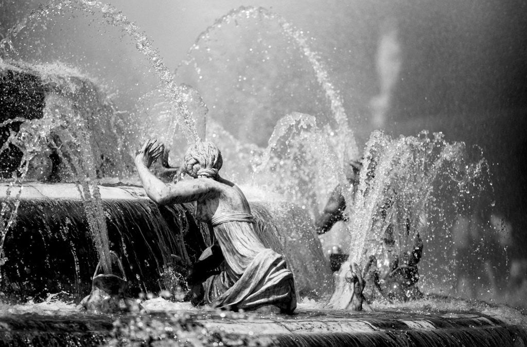Versailles Fountain II by Phillipe Delmouz