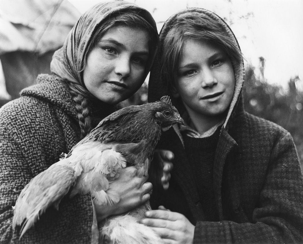 Detail of Janie and her brother, gipsy family, Charlwood, Surrey, 1964 by Tony Boxall