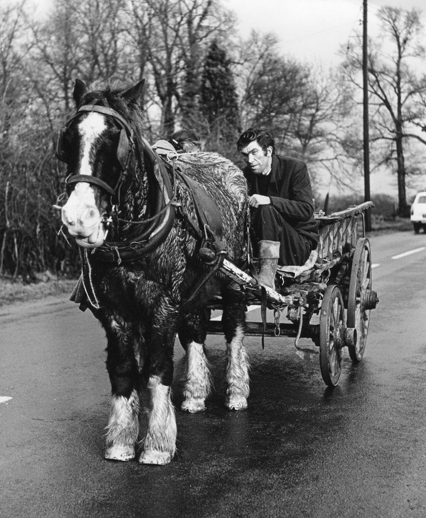 Detail of Gypsy man with horse and cart, 1960s by Tony Boxall