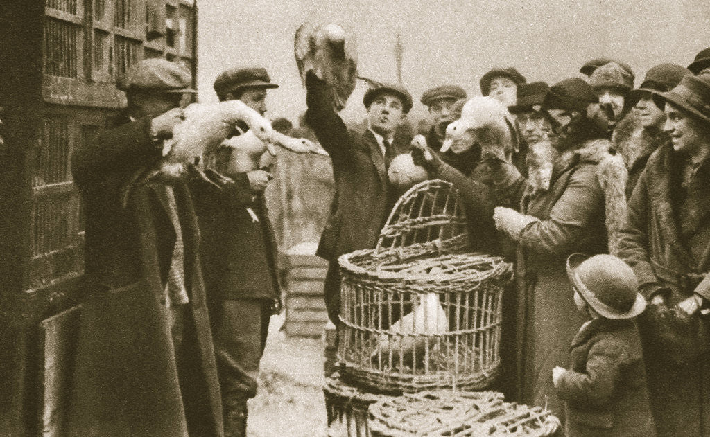 Detail of Buying live poultry at a 'Pedlars' Market' at the Caledonian Market by Anonymous