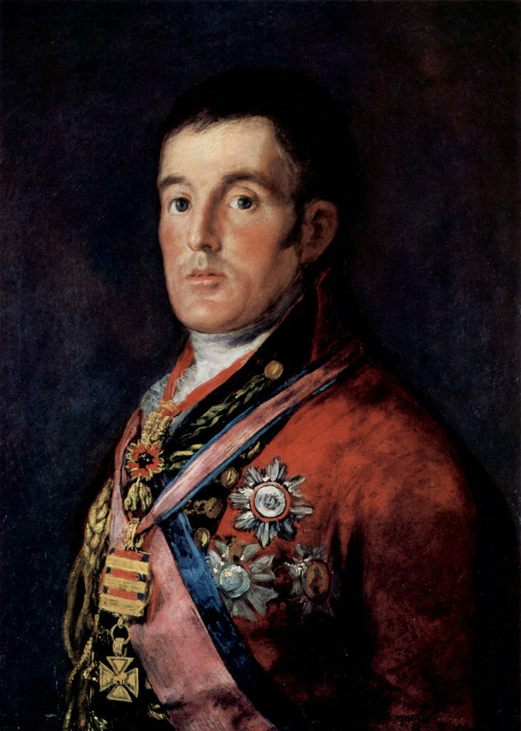 Detail of Portrait of Field Marshal Arthur Wellesley, 1st Duke of Wellington by Francisco Goya