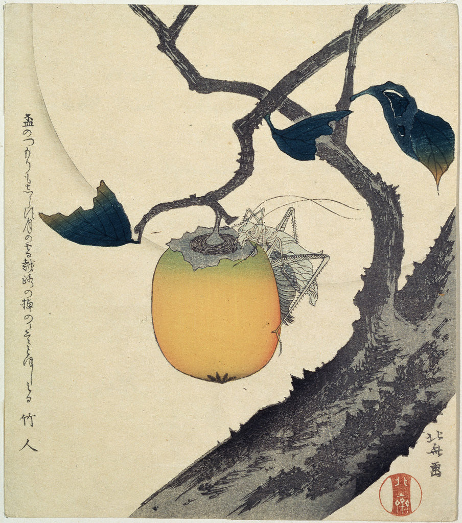 Detail of Moon, Persimmon and Grasshopper by HOKUSAI