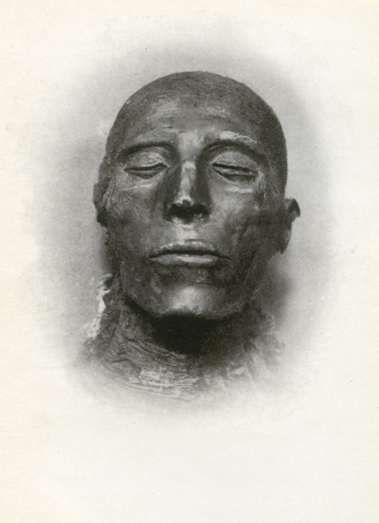 Detail of Head of the mummy of Sety I, Ancient Egyptian pharaoh of the 19th Dynasty by Winifred Mabel Brunton