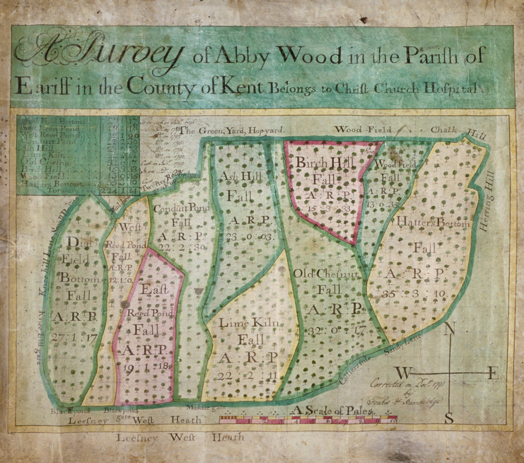 Detail of Map of Abbey Wood, part of Erith or Lesnes Manor on the eastern boundary of Woolwich, Kent by Anonymous