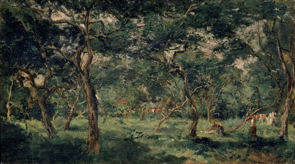 Detail of Olive Orchard, early 1870s by Charles François Daubigny