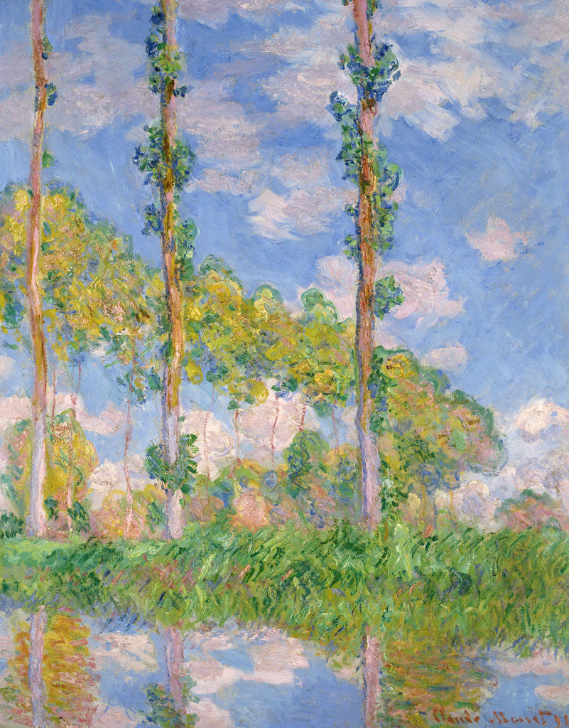 Poplars in the sunlight by Claude Monet Giclee Fine Art Print Repro on Canvas