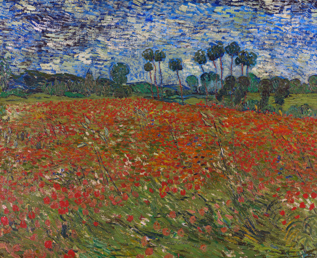 Detail of Poppy field by Vincent Van Gogh