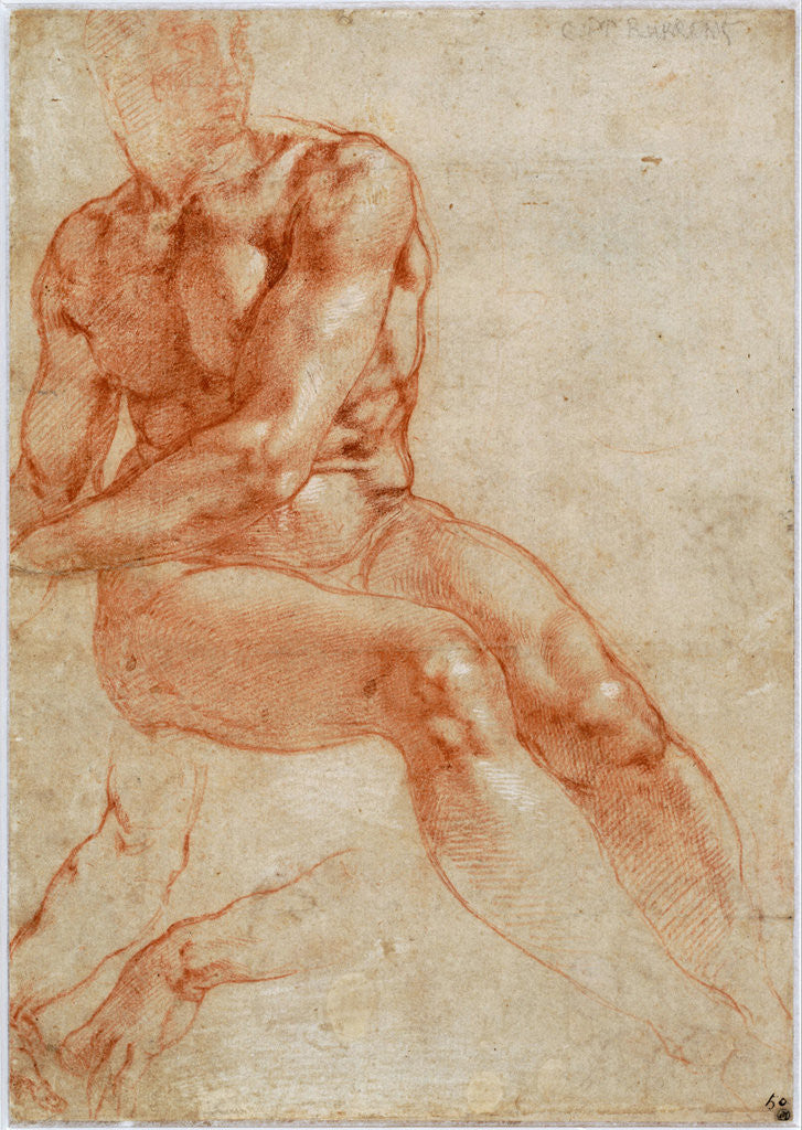 Detail of Seated Young Male Nude and Two Arm Studies by Michelangelo Buonarroti