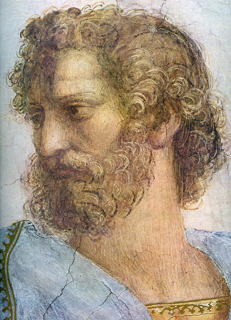 Detail of Aristotle. Stanza della Segnatura. The School of Athens (Detail) by Raphael