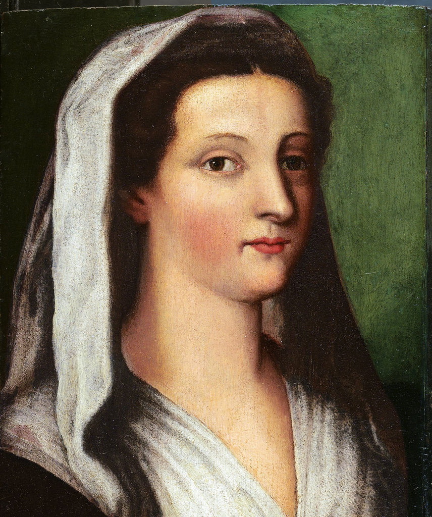 Detail of Portrait of Giulia Gonzaga, 16th century by Sebastiano del Piombo