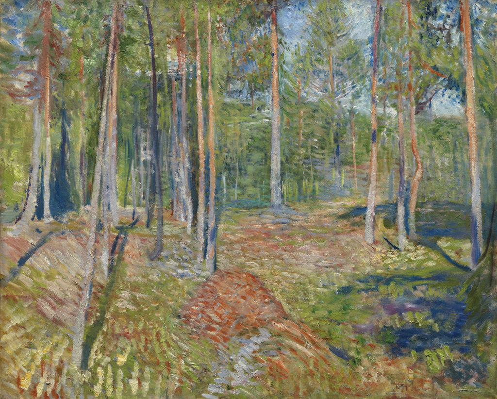 Detail of Pine Forest, 1891-1892 by Edvard Munch